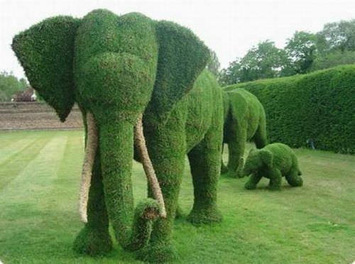 Grass sculptures elephant