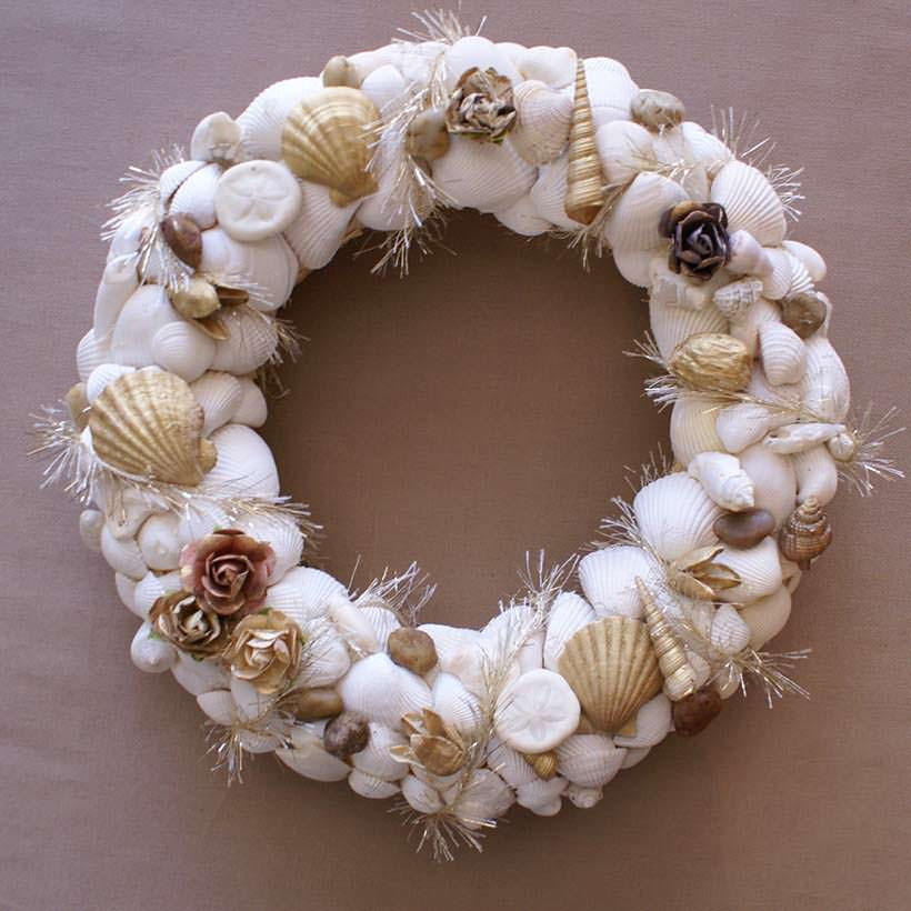shells 2-2