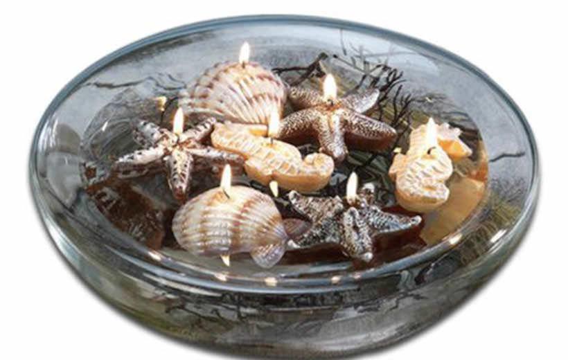 shells 4-1