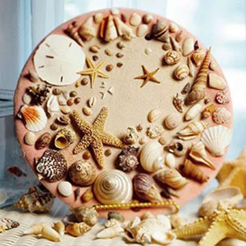 shells 5-1